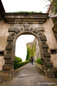 Take a day trip to Lake Bracciano and Visit The Orsini-Odescalchi Castle (where…