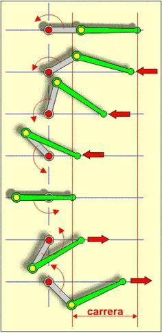Diferentes fases de un Mecanismo biela-manivela