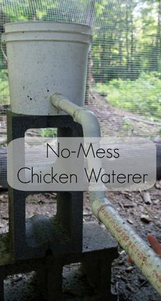 Make your own easy chicken waterer with these instructions.