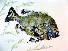 FRESH WATER GYOTAKU GALLERY - GYOTAKU Fish Rubbings - Art by Barry ...