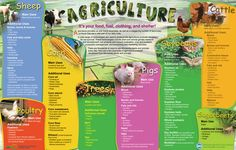 Agriculture Products -  FREE poster/placemat that illustrates many uses of Minnesota's ag products.  http://www.mda.state.mn.us/kids/teachresources/byproducts.aspx