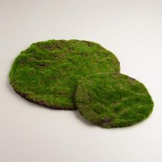 One of my favorite discoveries at WorldMarket.com: Mossy Table Mat