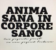 Asics - Anima Sana I