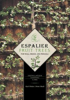 Espalier Fruit Trees for Wall, Hedge, and Pergola : Installation Shaping Care by Peter Modl and Karl Pieber Hardcover) for sale online Espalier Fruit Trees, Dwarf Fruit Trees, Growing Fruit Trees, Fruit Plants, Trees And Shrubs, Little Gardens, Small Gardens, Light Picture Wall, Pergola