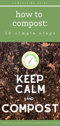 How to Compost: 10 Simple Steps for Composting Success Composting Methods, Composting At Home, Garden Compost, Garden Soil, Garden Tips, Garden Ideas, Planting Vegetables, Growing Vegetables, Vegetable Gardening