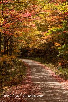 How I plan my fall foliage vacation - New England fall foliage
