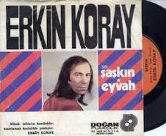 Image result for 45'lik plaktan kaliteli