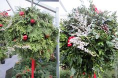 Holiday kissing balls -- perfect to hang on your front porch and will last through winter! Also shows you how to DIY. Home Depot Christmas Crafts For Gifts, Christmas Tree Farm, Christmas Goodies, Outdoor Christmas, Christmas Wreaths, Christmas Decorations, Holiday Decorating, Winter Holidays, Winter Christmas