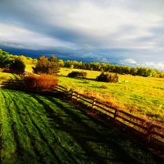 Early evening sun makes an appearance, Centennial, Co., 5/2015, by Amy Lilley