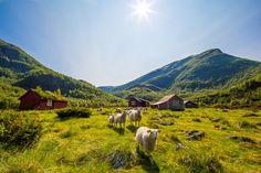 Mountain summer by Espen Haagensen on 500px