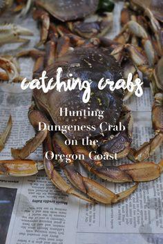 Crabbing on the Central Oregon Coast Waldport Oregon, State Of Oregon, Central Oregon, Oregon Coast, Oregon Washington, Pacific Crest Trail, Pacific Coast, Pacific Northwest, Oregon Travel