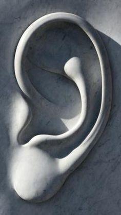 Ear Ringing & Vitamin B Complex