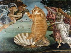 Svetlana Petrova, La naissance de Vénus / Fat Cat Art •