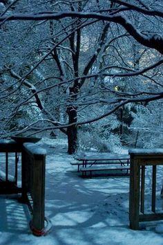 Winter Dark Moon Shadows