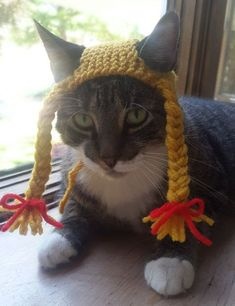 Braided Pigtail Cat Hat by StitchedAdventures on Etsy Braided Pigtail Cat Hat by StitchedAdventures Animals And Pets, Cute Animals, Chat Crochet, Hipster Cat, Dog Books, Cat Sweaters, Cat Hat, Cat Accessories, Pet Costumes