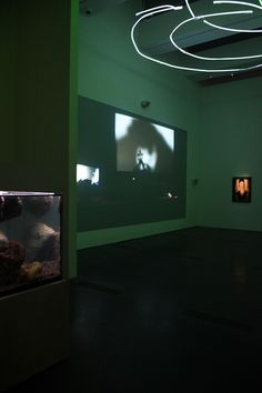 Pierre Huyghe at LACMA, Photo by Stefanie Keenan, 2014