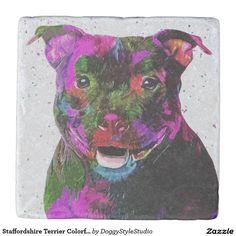 Staffordshire Bull Terrier Colorful Pop Art Portrait Stone Coaster