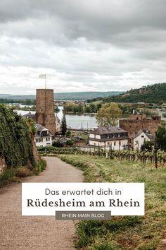 Sehenswürdigkeiten und Highlights in und um Rüdesheim am Rhein. Infos zur Seilbahn, Wanderungen und mehr. Maine, Rhein Main Gebiet, Frankfurt, Highlights, Outdoor, Wine Vineyards, Bike Rides, Wiesbaden, Outdoors