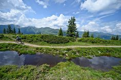 Hacklberg Trail (2)