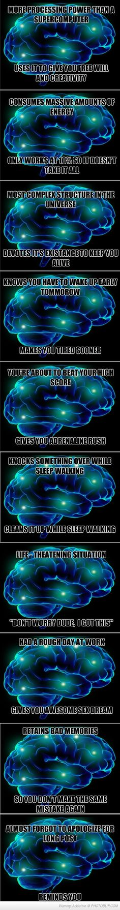 Not All Brains Are Scumbags