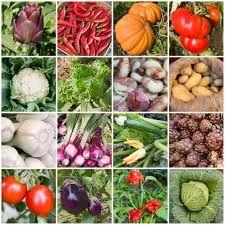 9 En Iyi Ilkbahar Goruntusu Meyve Sebzeler Ve Yemek Ve Sarap