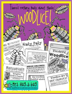 Did you know that woodlice are sometimes used by museum workers to clean the flesh off delicate skeletons?  Come and get better acquainted with pill bugs, roly polies, slaters and other members of the woodlice family in this 26 page 'fun and facts' woodlice booklet...