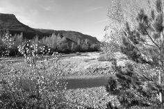 NBG19 - Eglise de Valbelle - Alpes de Haute Provence 04