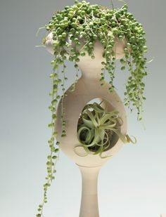 Futuristic Mod Plant Golly Goodness by Tend and Jason Lane Hanging Plants, Potted Plants, Indoor Plants, Container Plants, Container Gardening, Mosaic Glass, Plant Hanger, Garden Art, Futuristic