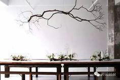 一束枯枝,一束樸素、寂靜、自然的美! - 壹讀