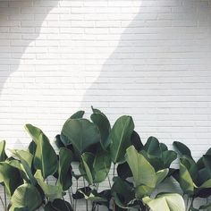 #hipbeds #designer #interior #interiordesign #decor #home #homedecor #architecture #vintage #minimalist #minimal #modern #luxury #bedroom #bed #furniture #furnituredesign #inspire #livingroom #designer #forsale #freeshipping #usa #instagood #instalike