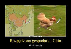 Rozpędzona gospodarka Chin – Goni Japonię