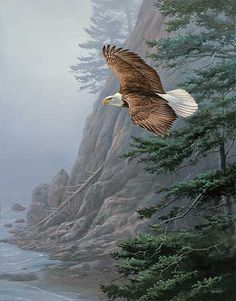 Freedom Flight-Eagle Painting; Millette