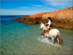 Bucket List: Horseback riding on the beach My Horse, Horse Love, Horse Riding, Beautiful Horses, Beautiful Places, Types Of Horses, All About Horses, Riding Lessons, Thoroughbred Horse