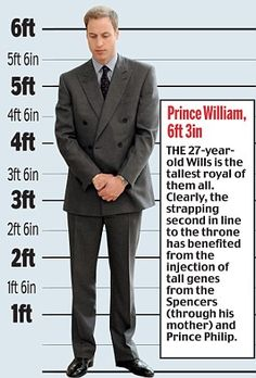 "At 6'3"", Prince William is on track to become the tallest monarch in British history! Scale showing the heights of British royalty, past and present."