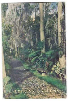 Cypress Gardens in the Cypress Gardens Florida, Back In The Day, 1930s, Nostalgia, Dream Wedding, The Past, World, Painting, Vintage