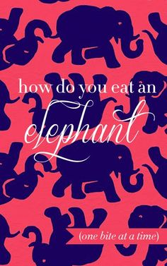 An elephant might seem impossible to eat (okay, gross... no one actually eats elephants), but when you take it one step (errr bite) at a time, you can. Seemingly impossible tasks become doable when they're broken up into small, measurable, and purposeful tasks.