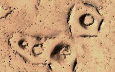 Situada cerca del ecuador, Elysium Planitia es la segunda región volcánica más grande de Marte, ...