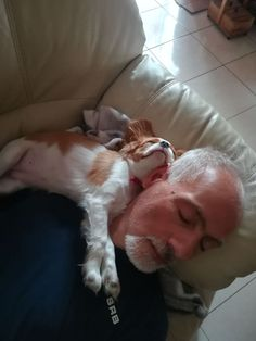 Things that make you go AWW! Like puppies, bunnies, babies, and so on. Cavalier King Spaniel, Cavalier King Charles Dog, King Charles Spaniel, Cute Funny Animals, Cute Baby Animals, Brittany Spaniel Puppies, Cute Puppies, Cute Dogs, Cute Animal Photos