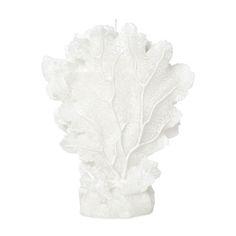 Kaarsen - Decoratie | Zara Home Nederland 12,95