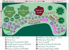 Flower Garden Ideas Shade how to design a simple garden plan | garden ideas, flower