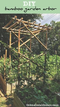 How to tie japanese knots make bamboo fences and trellis bamboo diy bamboo garden arbor a tutorial on how to build bamboo garden structures this solutioingenieria Image collections