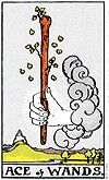 Ace of wands he Ace of Wands is the initial burst of creativity and outpouring of energy that energizes a project and inspires people to greatness. This is the spark that starts the fire, and though it cannot tell us whether the fire will burn brightly or fizzle out, its power remains. The symbology of the castle and the river on the Rider-Waite variants tells you that the Ace of Wands is like a torch that can guide you to success. However, you must be willing to carry the torch with you as…