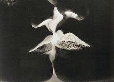 Man, Ray - Negative Kiss - Dada - Body - Photo