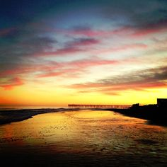 Myrtle Beach, South Carolina | Click on the pin for more info | Photo via Instagram by@chinchellaaa