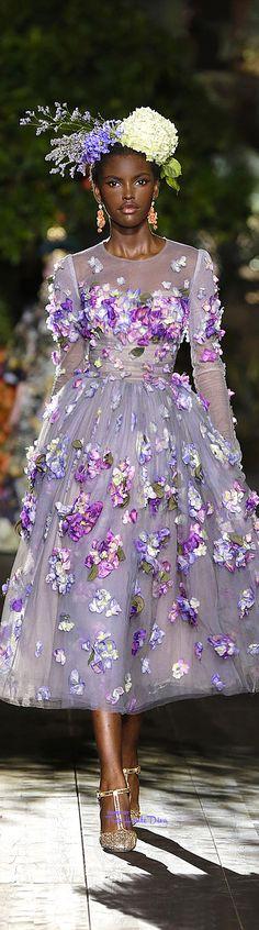 Dolce & Gabbana Alta Moda jesień / zima 2015-16