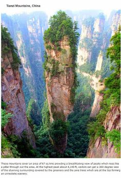 endroits-a-visiter-avant-de-mourir-mont-tianzi