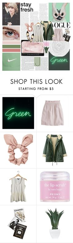 """~ I MISSED YOU GUYS!! ~"" by taylorswiftno1 ❤ liked on Polyvore featuring J.Crew, Topshop, Sara Happ, Assouline Publishing, Agave and Jimmy Choo"