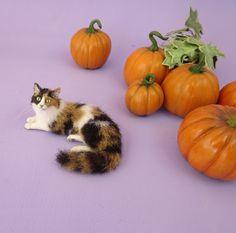 Pumpkin A OOAK Unique Realistic Miniature Handmade Calico Kitty Cat Sculpture | eBay