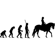 Evolution Horse Woman - Evolution Horse, a must for every horse fan. Horse Pictures, Animal Pictures, Cute Pictures, Cute Horses, Horse Love, All About Horses, Horse Quotes, Show Jumping, Horse Riding