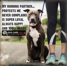 My running partner....Protects me never complains, is super loyal always happy and 100 percent ready #dog #puppy